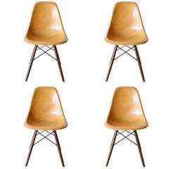Set of Four Eames Ochre Dark DSW Herman Miller, USA Dining Chairs