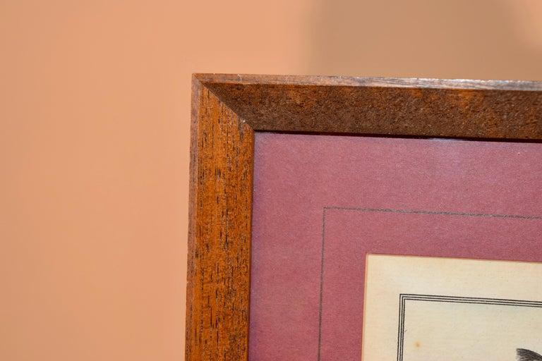 Set of Four Framed Equestrian Engravings 2