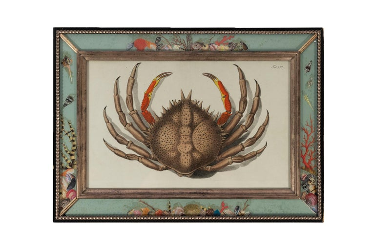 French Set of Four Frames, Glass and Silvered Wood, circa 1970, France For Sale