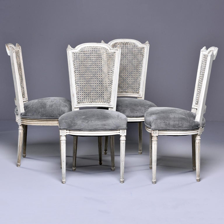 Set of four French dining chairs feature painted frames with caned backs and newly upholstered seats covered in gray chenille velvet, circa 1920s. Caned backs have a subtle painted lattice pattern. Reeded legs are topped with carved medallions.