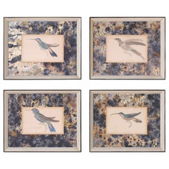 Set of Four Hand Colored Humming Bird Prints