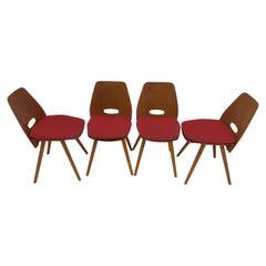 Set of Four Mid-Century Dining Chairs/ Tatra Pravenec, 1960's