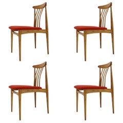 Set of four Mid century organic DESIGN Beech Dining Chairs - 1960s