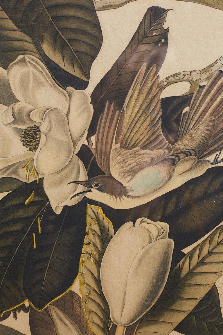 Set of Four Ornithological Prints in the style of Audubon, facsimiles, 1937 For Sale 11