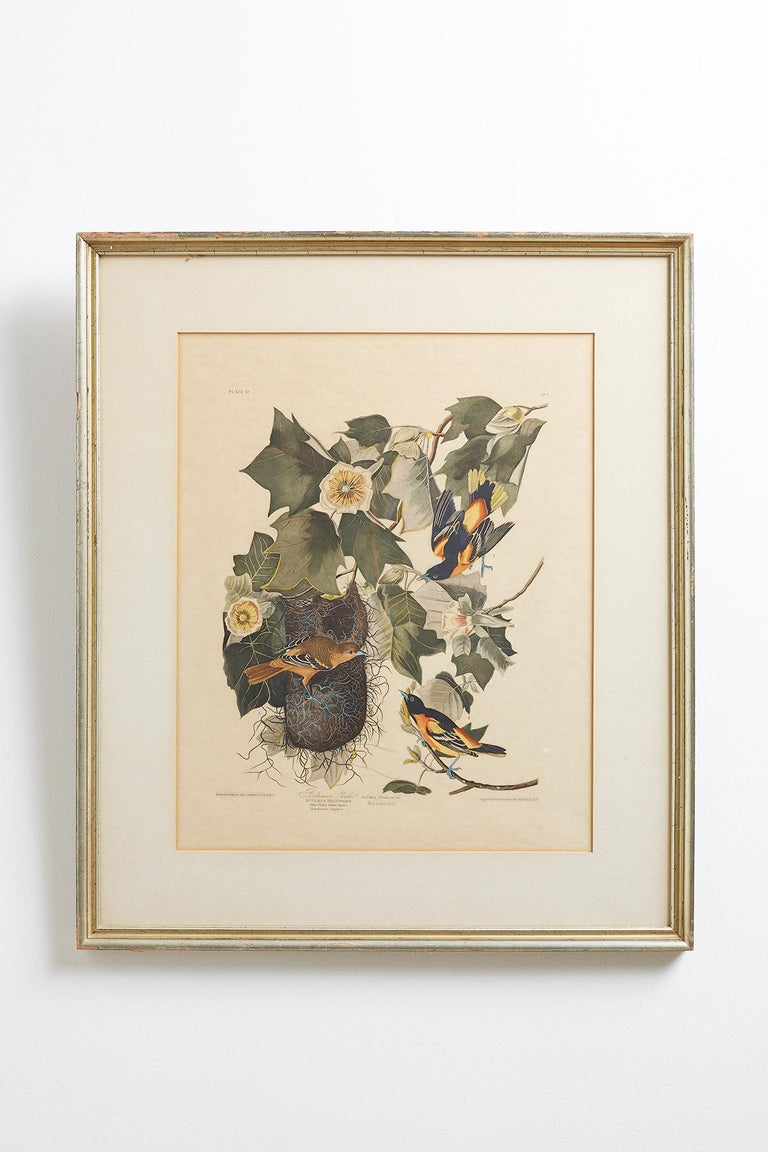 American Set of Four Ornithological Prints in the style of Audubon, facsimiles, 1937 For Sale