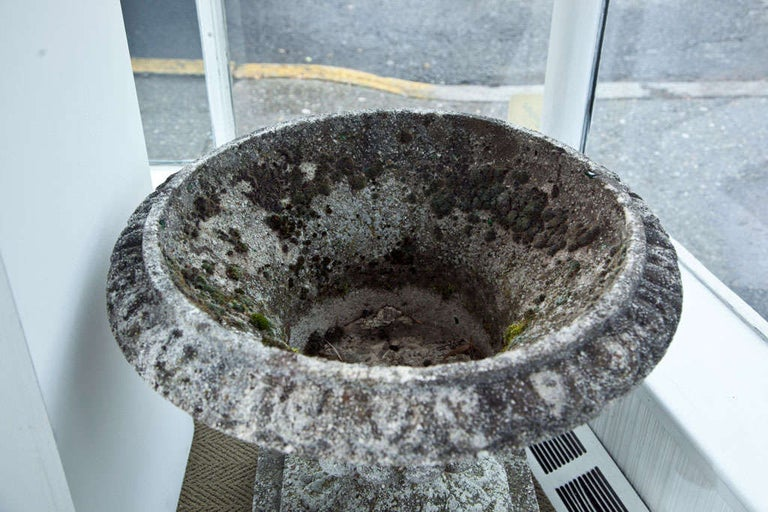 Set of Four Semi Lobed Cement Urns For Sale 3