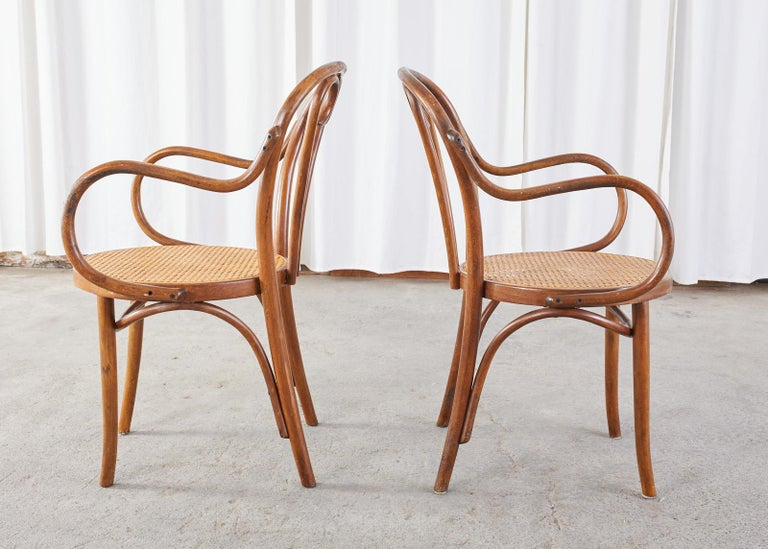 Set of Four Thonet Style Bentwood and Cane Armchairs For Sale 3