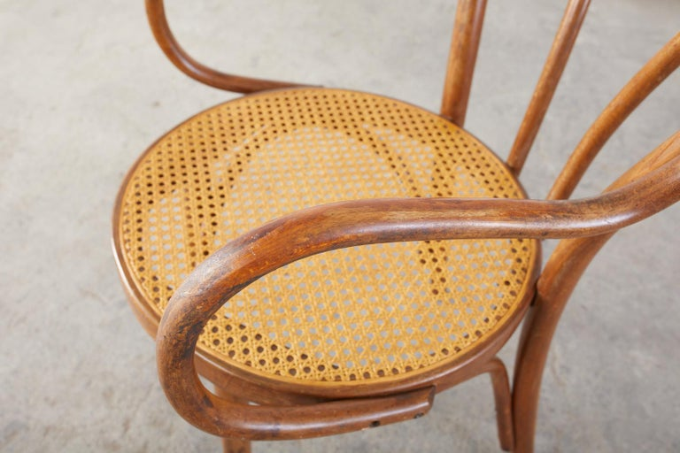 Set of Four Thonet Style Bentwood and Cane Armchairs For Sale 4