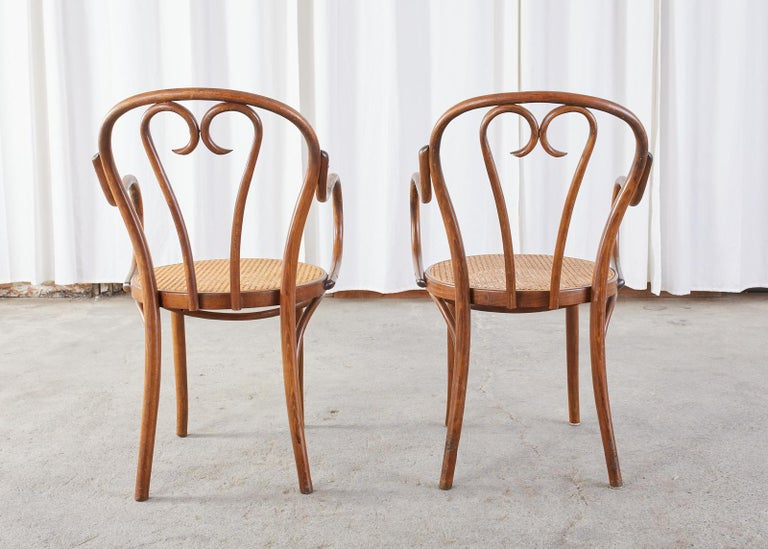 Set of Four Thonet Style Bentwood and Cane Armchairs For Sale 13