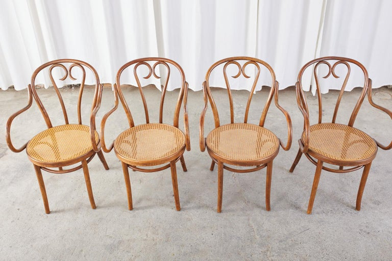 Vienna Secession Set of Four Thonet Style Bentwood and Cane Armchairs For Sale