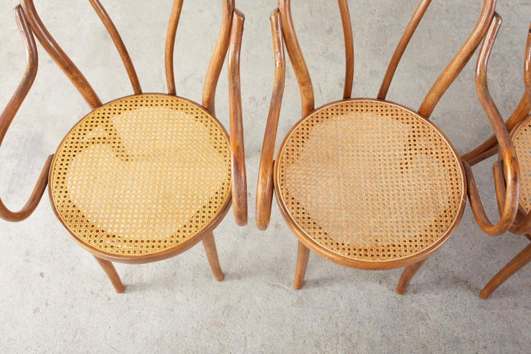 Polish Set of Four Thonet Style Bentwood and Cane Armchairs For Sale