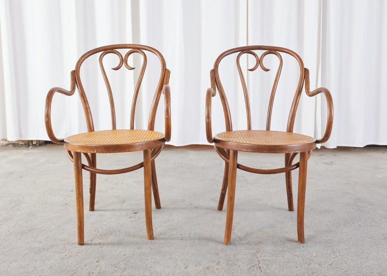 20th Century Set of Four Thonet Style Bentwood and Cane Armchairs For Sale