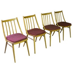 Set of Four Vintage Dining Chairs, TON, 1960s, Czechoslovakia