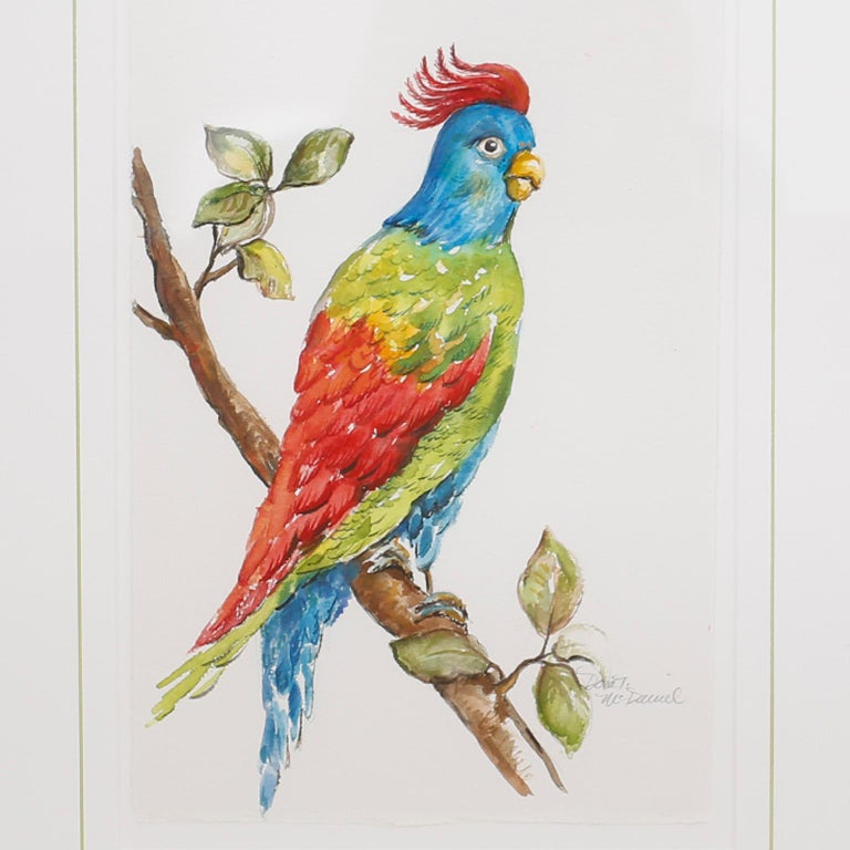 Set of Four Watercolor Paintings of Parrots For Sale 5