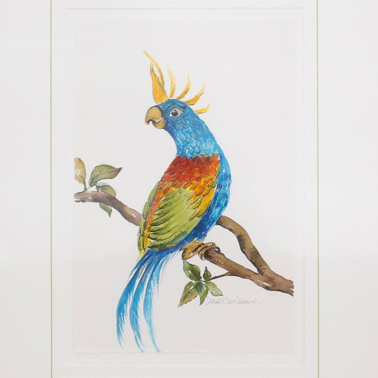 Delightful set of four watercolors of parrots executed with vivid tropical colors and artistic aplomb. Signed by the noted artist Dora McDanial behind glass and presented in carved wood painted frames.