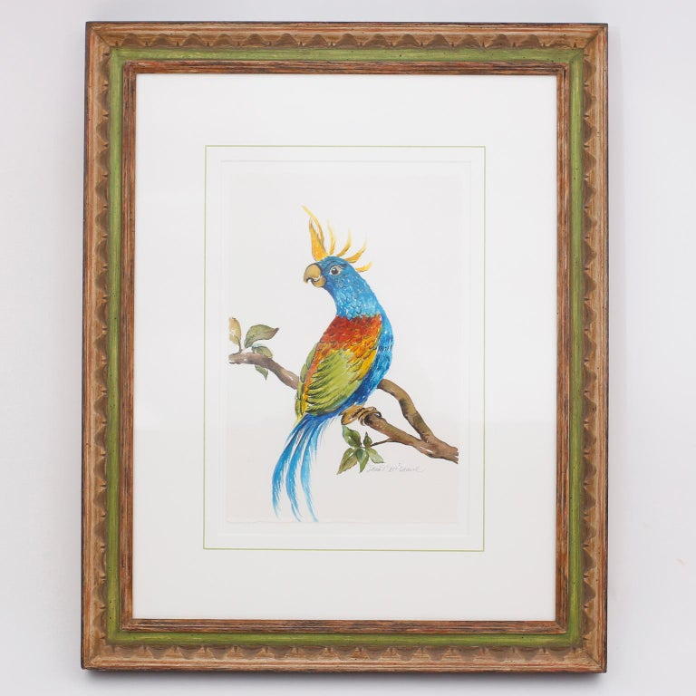 British Colonial Set of Four Watercolor Paintings of Parrots For Sale