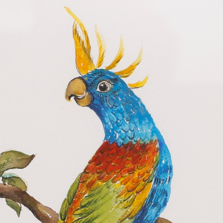 American Set of Four Watercolor Paintings of Parrots For Sale