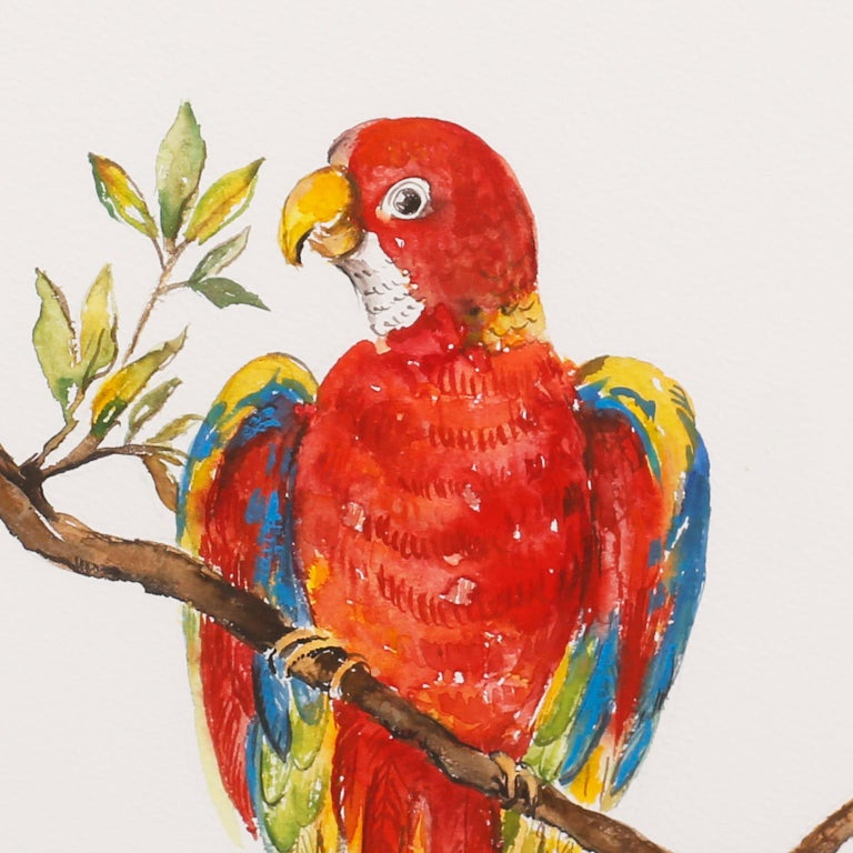 Wood Set of Four Watercolor Paintings of Parrots For Sale