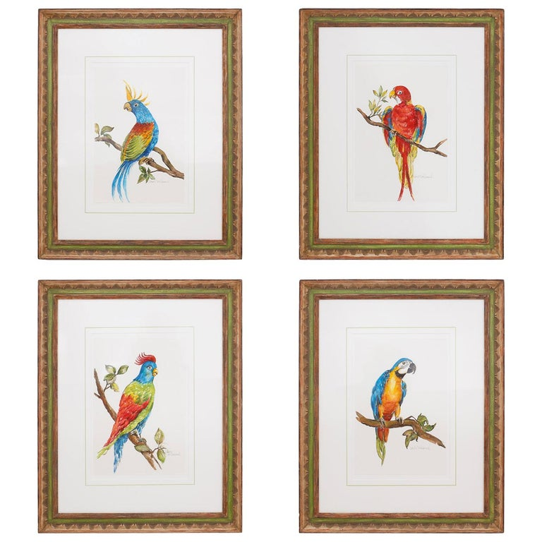 Set of Four Watercolor Paintings of Parrots For Sale