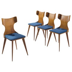 Set of Four Wingback Dining Chairs in Blue Upholstery Attributed to Carlo Ratti