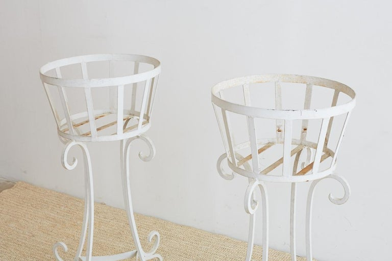 Set of Four Wrought Iron Painted Plant Stands For Sale 4