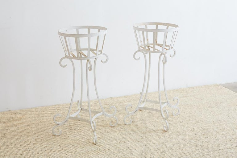 Set of Four Wrought Iron Painted Plant Stands For Sale 6