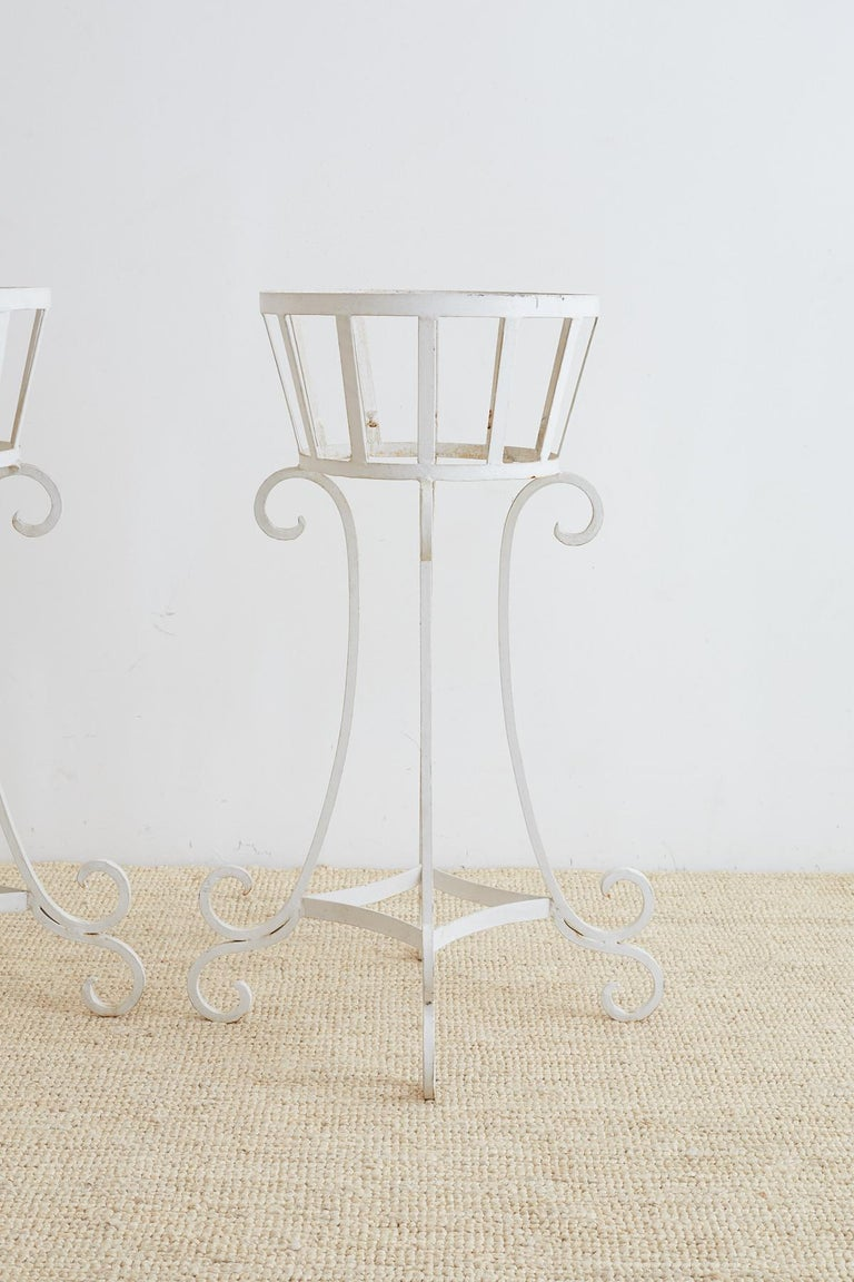 Victorian Set of Four Wrought Iron Painted Plant Stands For Sale
