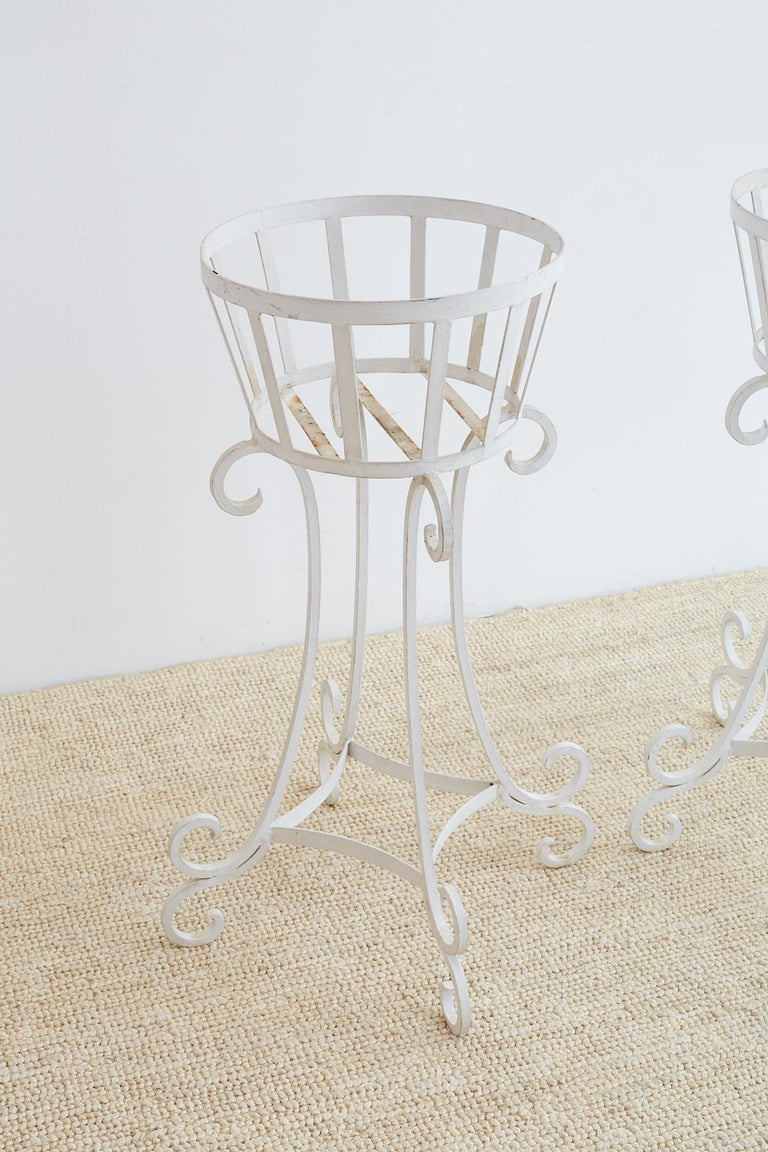 Set of Four Wrought Iron Painted Plant Stands In Good Condition For Sale In Oakland, CA
