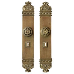 Set of French Brass Doors Handles and Plates