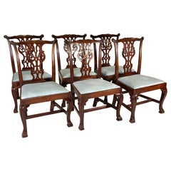 Set of Irish Georgian Dining Chairs