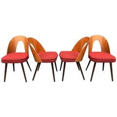 Set of Midcentury Dining Chairs by Antonin Suman, Czechoslovakia
