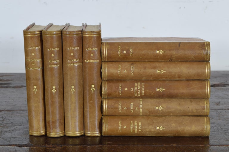 Mid-19th Century Set of Nine French Leather Bound Histories, 19th Century For Sale
