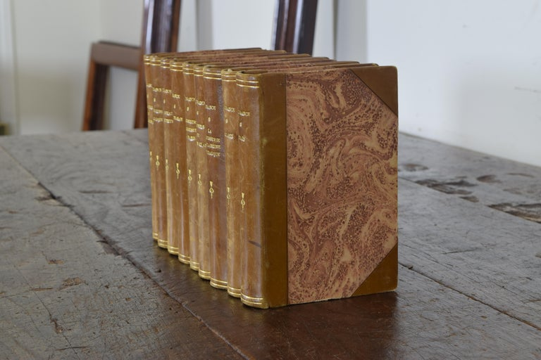 Set of Nine French Leather Bound Histories, 19th Century For Sale 1