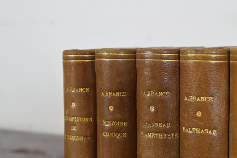 Set of Nine French Leather Bound Histories, 19th Century For Sale 2