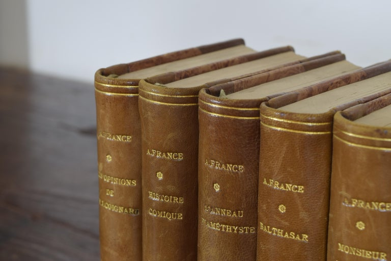 Set of Nine French Leather Bound Histories, 19th Century For Sale 3