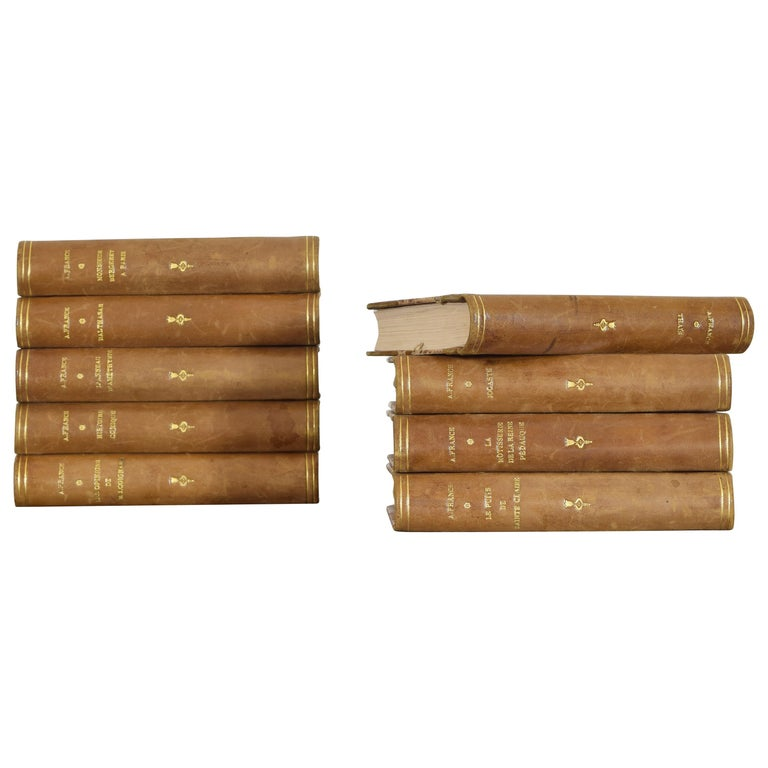 Set of Nine French Leather Bound Histories, 19th Century For Sale