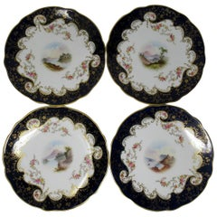 Set of Nine Hand Painted Cabinet Plates Scottish Welsh Views Coalport
