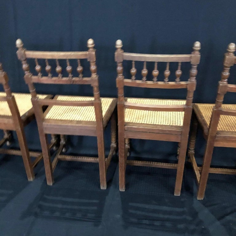 Set of Nine Period French Henri II Oak and Caned Dining Chairs For Sale 8