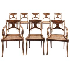 Set of Six 19th Century Regency Faux Rosewood Dining Chairs and Two Armchairs