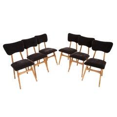 Set of Six 20th Century Black Velvet Chairs, 1960s