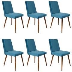 Set of Six 20th Century Petrol Blue Velvet Chairs, 1960s