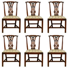 Set of Six Antique Dining Chairs English Victorian Chippendale Taste, circa 1900