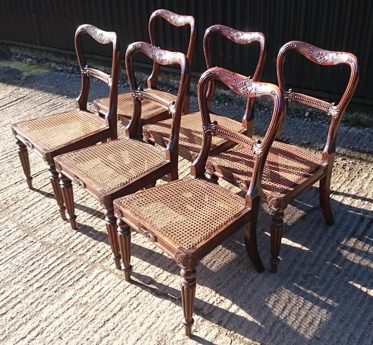 19th Century Set of Six Antique Regency Chairs Made by Gillow of Lancaster and London For Sale