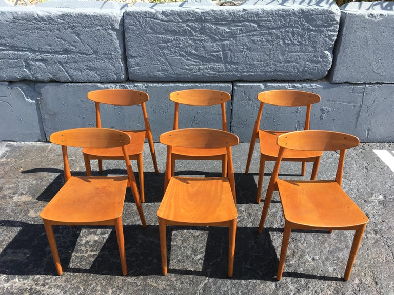 Mid-Century Modern Set of Six Beautiful Bentwood Danish Dining Chairs For Sale