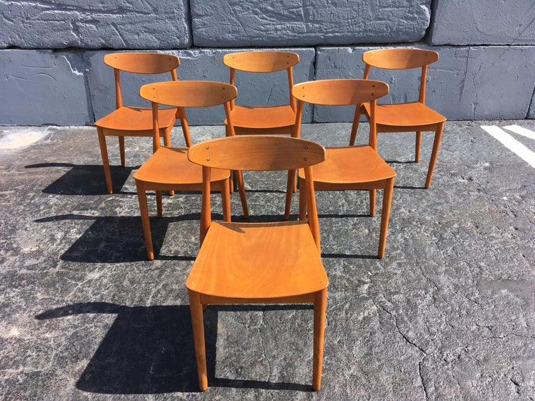 Mid-20th Century Set of Six Beautiful Bentwood Danish Dining Chairs For Sale