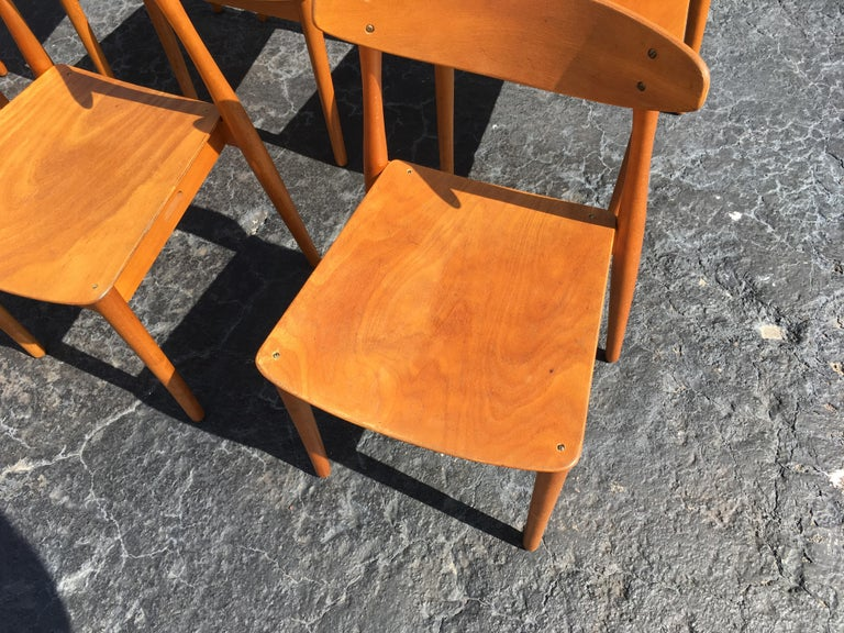 Set of Six Beautiful Bentwood Danish Dining Chairs For Sale 3
