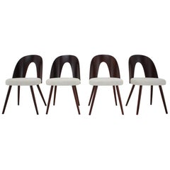 Set of Six Beautiful Dining Chairs by Antonín Šuman, 1960s