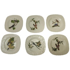 Set of Six Birds of America Porcelain Dessert Plates