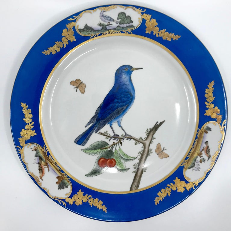 Set of six blue and white bird plates. Set of six 20th century Sèvres style gilt and painted dinner plates with blue banded and gilt borders with reserves of small birds centering on white field featuring six different birds including a European