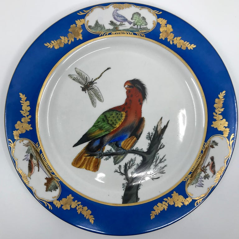 Porcelain Set of Six Blue and White Bird Plates For Sale